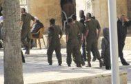 مستوطنون يقتحمون المسجد الأقصى بحراسة قوات الاحتلال الإسرائيلى