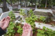 بحث علمي يفسر سبب سماع أصوات الموتى في المقابر