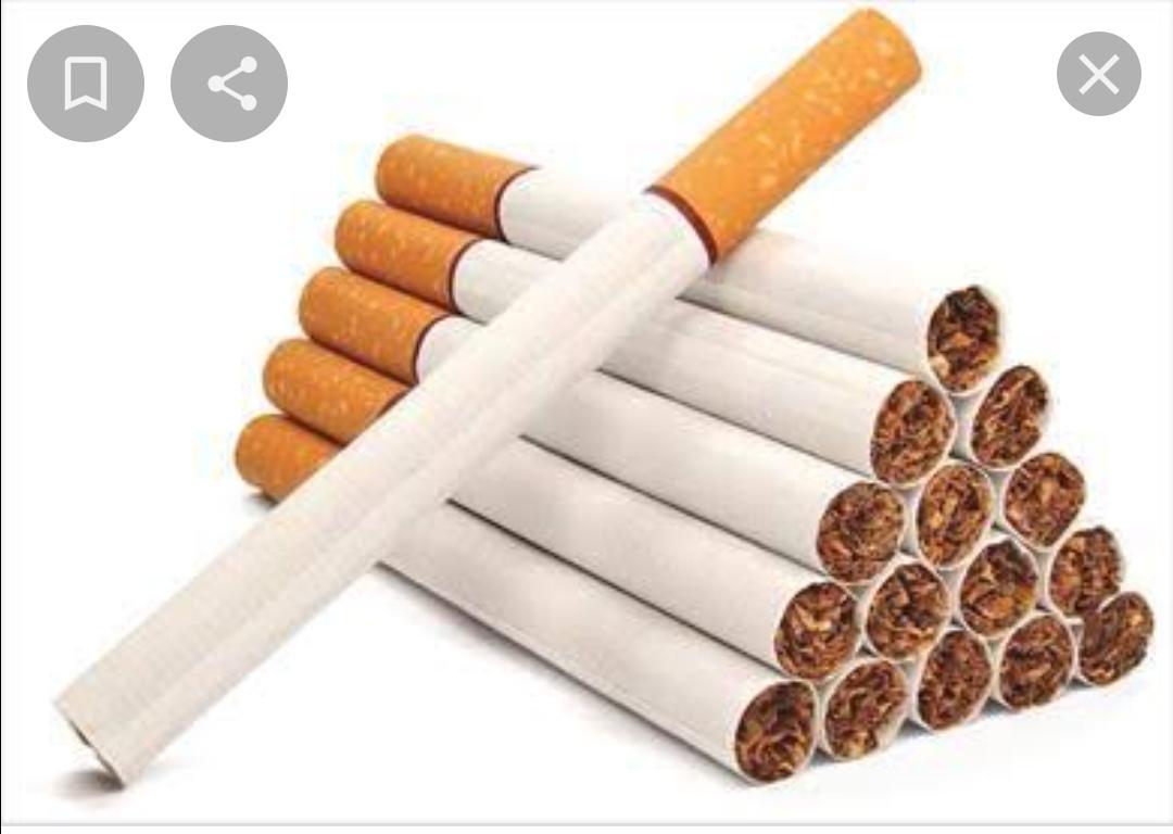 المصريون استهلكوا 67 مليار سيجارة  كليوباترا خلال عام